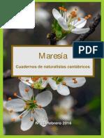 Maresía 10