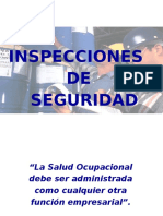 Inspeccion Seguridad