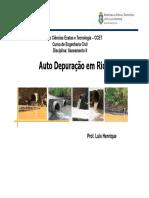 aula_autodepuracao_20152.pdf