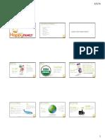 sustainability baseline portfolio handout