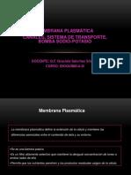 Membranas Plasmáticas - Bomba Sodio-Potasio (1)