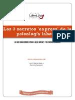 PDF Los 3 Secretos de La Psicología Laboral