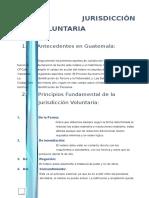 Analisis Expediente Jv Intestado e Identificacion de Tercero