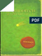 Il Quidditch at Travers Oi Secoli