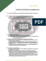 EJERCICIO DE REPASO PREPARACIÓN EX FINAL BIO 2 BACH