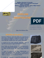 Phylum Graptolithos