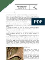 Guantez-4 solucionario
