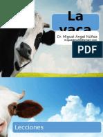La Vaca Colegios