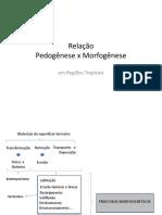 Relação Entre Pedogênese e Morfofogênese - LABOGEF (UFG)
