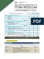 Estrutura Modular Cursos Vocacionais 3º Ciclo