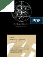 Invisible Shapes / Fernando Gaspar