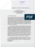 fundamentos de la regulación económica