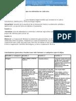 Nalisis Origen Proposity Limitaciones de Fuentes OPVL