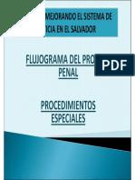 flujogramaprocedimientosespeciales-110601151937-phpapp01