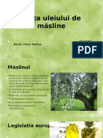 Piata Uleiului de Masline Si a Maslinelor de Masa