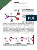 Talleres Bioquímica Remedial 2016-20160225-113248848 (Autoguardado)