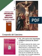 14 La Pasión y Muerte de Jesús