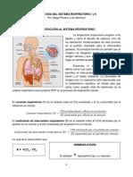 Introducción Al Sistema Respiratorio y Ventilación