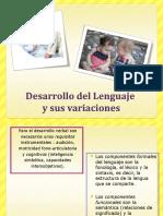 Taller de Dllo Del Lenguaje (1)
