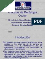 manualmorfoocular-130304202648-phpapp02