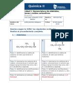 238140221 MIV U5 Actividad 3 Nomenclatura de Aldehidos Cetonas y Acidos Carboxilicos Quimica II