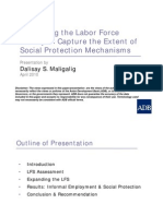 Expanding the Labor Force Survey to Capture the Extent of Social Protection Mechanisms