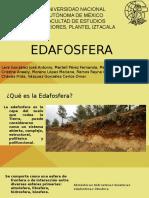 Edafosfera