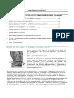 Manual Explicativo Sobre Cinto Lombar