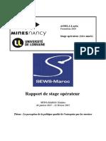 Rapport stage.pdf