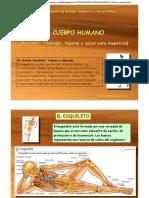 T3-Huesos-musculos