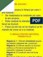 Reguli de Succes