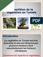 r Rtition Tation Tunisie