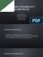 Patrones Organicos y Geometricos