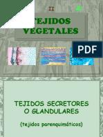 Tejidos Vegetales 1ºBAC (II)