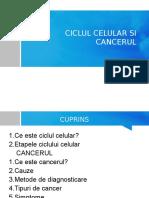 Ciclul Celular Si Cancerul