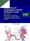 Principle of Congenital Heart Diseases