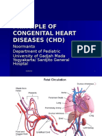 Principle of Congenital Heart Diseases