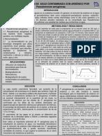 Cartel Biorremediación Pseudomonas Aeruginosa