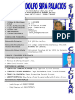 Sintesis Curricular Gustavo Sira2