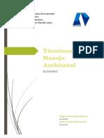Manejo y Diseño Ambiental
