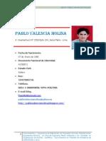 Pablo Valencia Molina Cv Sin Certificado