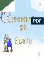 CITOME. FLUJO EXPOSICION
