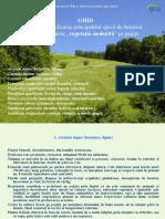 """Ghidul Pentru Identificarea Principalelor Specii de Buruieni Care Alcătuiesc """"Vegetaţia Nedorită"""" Pe Pajişti"""