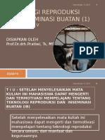 Teknik IB
