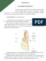 Tratamentul Balneofizical În Fractura de Calcaneu