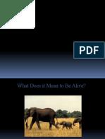 Characteristics of Life. 2 Pptx