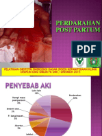 4. Perdarahan Post Partum
