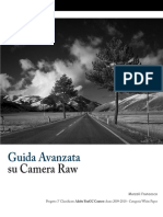 Guida a Vanz at a Camera Raw
