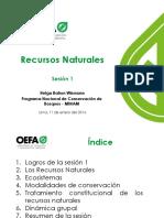 PPT Recursos Naturales OEFA