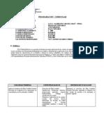 PROGRAMACion Plan Contable2009JNC